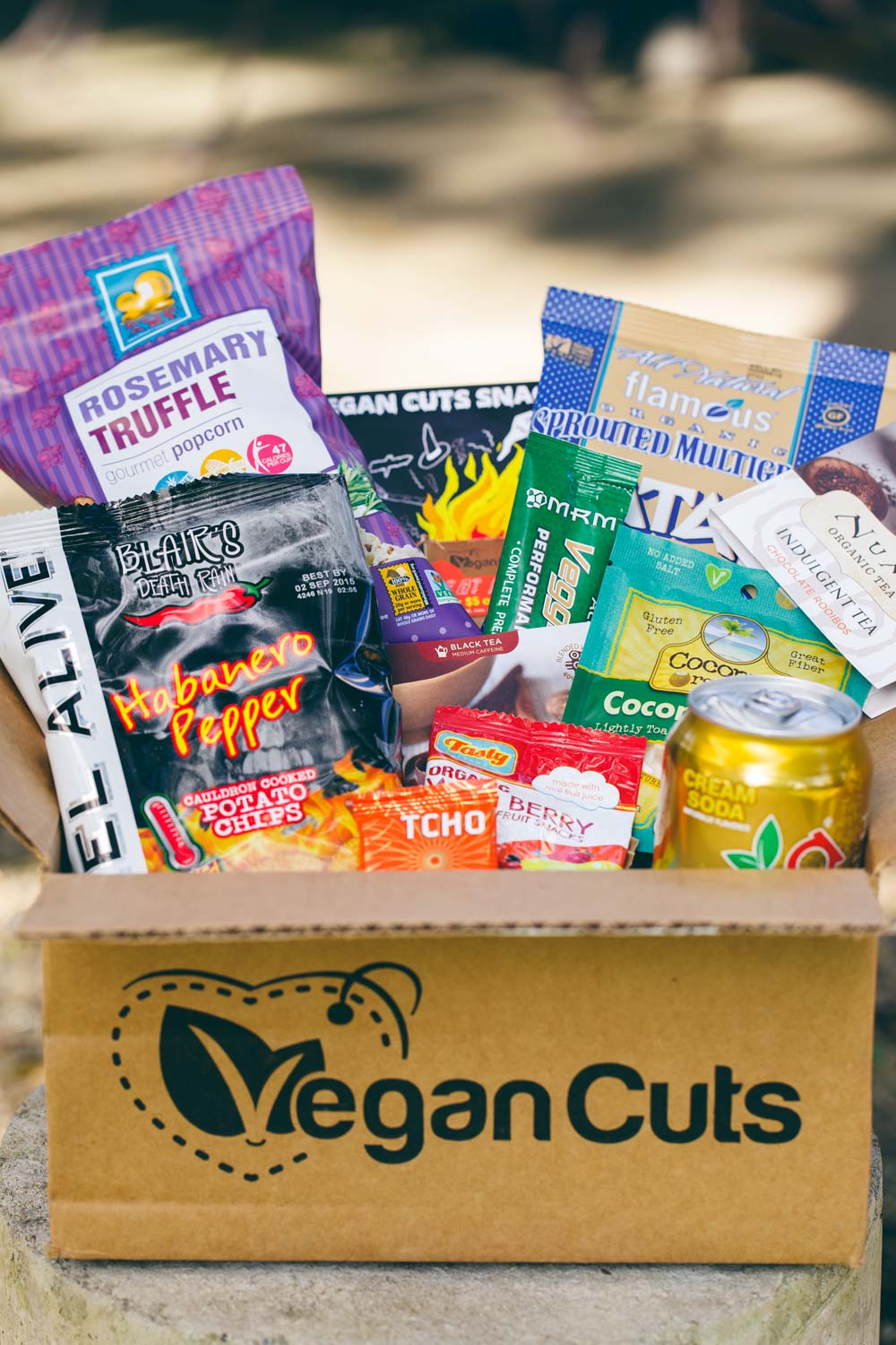 Vegan Cuts Snack Box October 2014