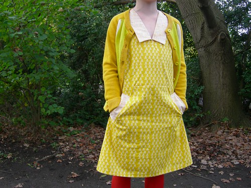 Sunday Picnic Dress