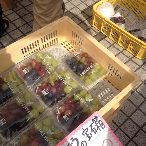 Grapes are expensive!! This little sampler box was $6; we saw a similar size package of another grape for $10!