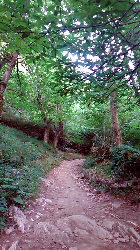 Camino de Santiago - Dia 7