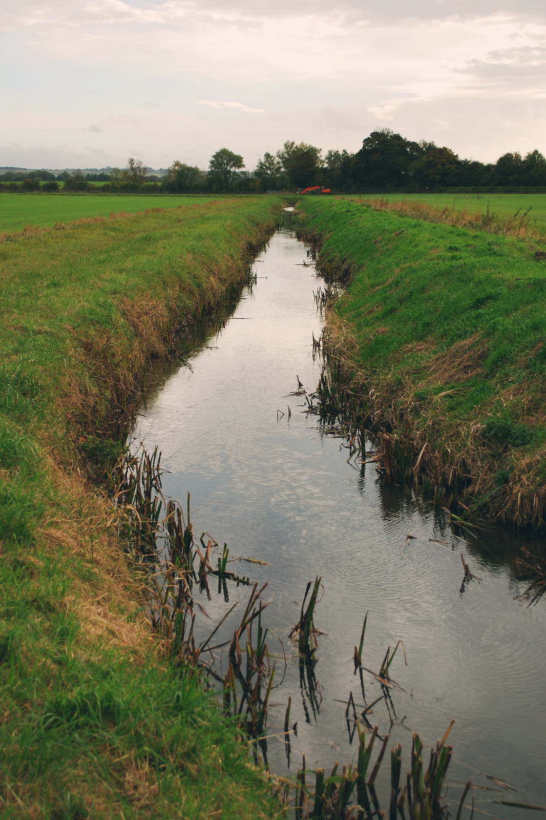 Cambridge stream walk