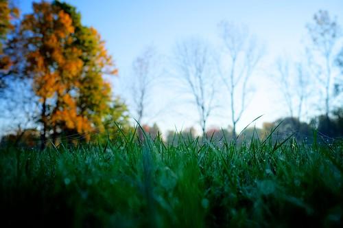 autumn fall field landscape seasons ky louisville