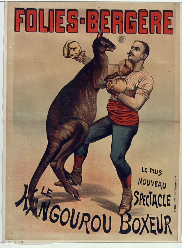 19th cent. french music-hall poster - boxing kangaroo