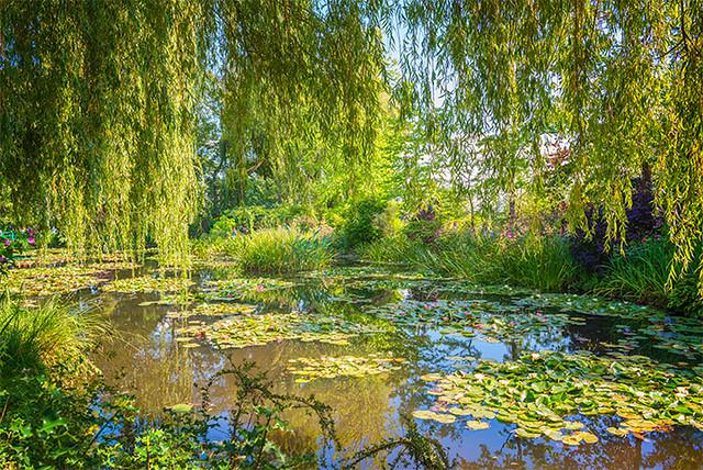 Giverny, estanque de los nenúfares