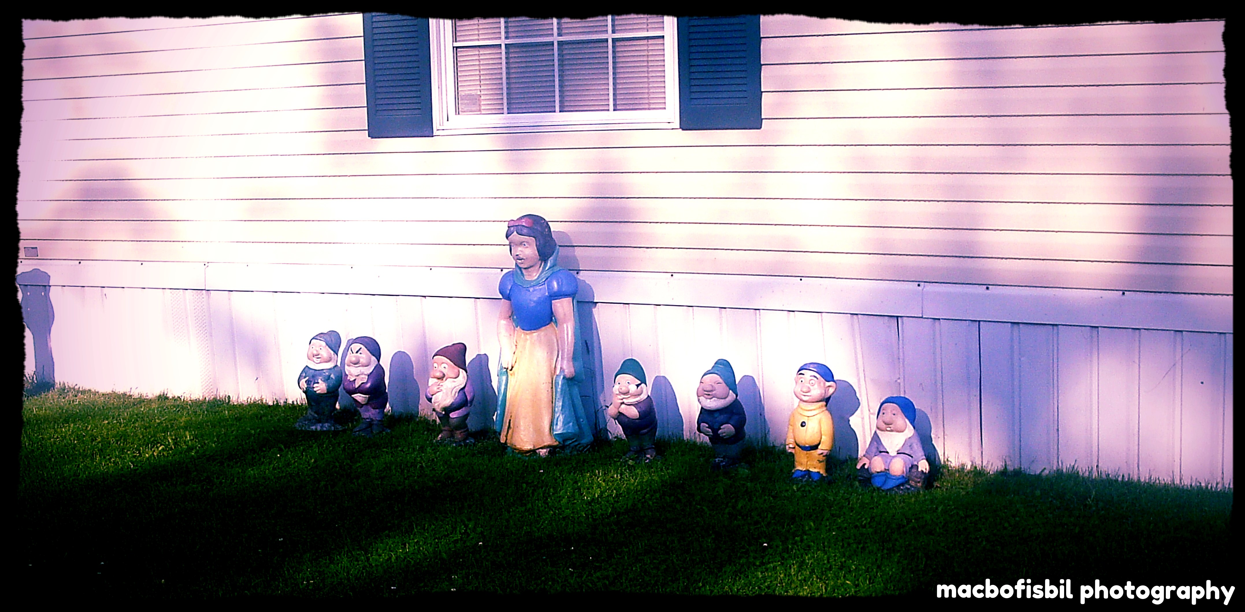 Day 286 - Snow White & the Seven Dwarves