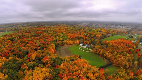 Peak Color at Prairie Wolf Park (10 16 2014)