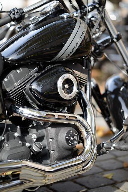 Harley_72556