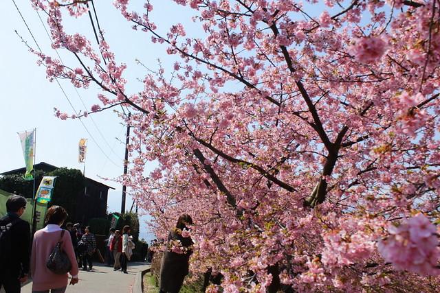 2014-03-16_00088_高松山