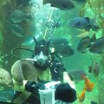 BAS Comic Con Dive Show_13