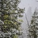 2014 First Snow 9_29-6