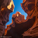 Looking Up (Lower Antelope Slot Canyon) by Robin Black Photography