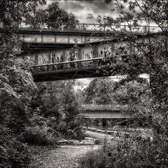 Three bridges! #bridges #woodstockontario #blackandwhite #blackandwhitephotography #nature #river @eduardontavares