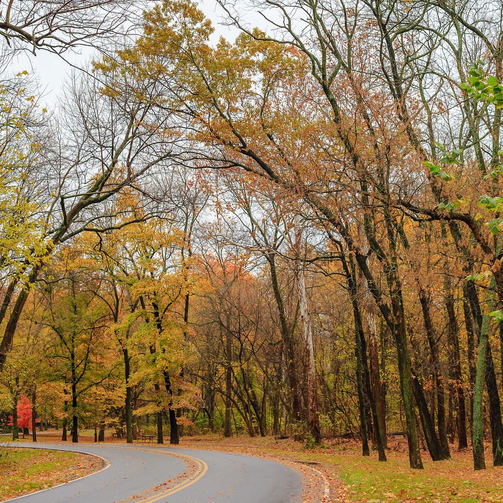 Rock Creek Park [Flickr]