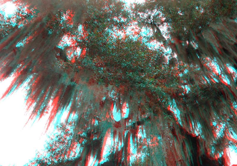 3-D Gainesville Pics by Jason Little