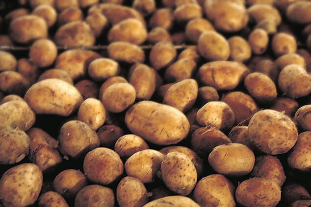 Photo of Potato