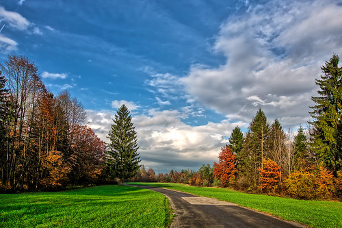 road travel autumn trees nature clouds forest landscape geotagged day driving peaceful bluesky slovenia ljubljana hdr travelphotography landscapephotography peacefulplace tripadvisor emptyroad landscapeview hdrphotography peacefulnature ifeelslovenia črnuče peacefulforest travelslovenia brnčičeva showinmyeyes fotobyiztokkurnik brnciceva crnuce