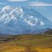 The Road to Denali by Gary Randall