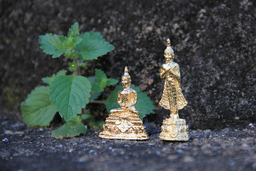 Leaf-sized gold leaf buddha statues, Wat Chiang Man