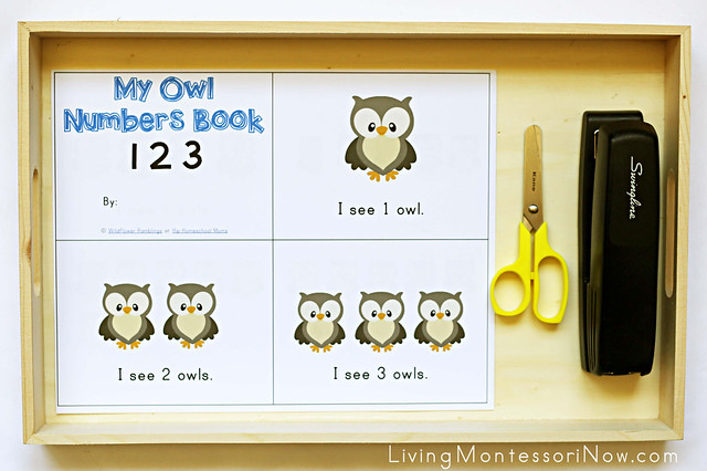 """My Owl Numbers Book"" Tray"