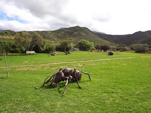 Это большой муляжный муравей на лужайке перед рестораном. Термит, наверное...