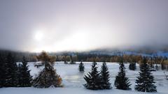 More frozen landscapes