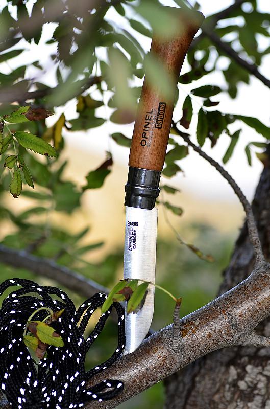 Des traces de couteaux dans les bois 15047392034_0aed64e200_b