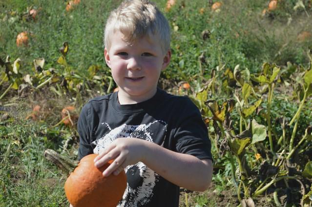 Odyn's Pumpkin