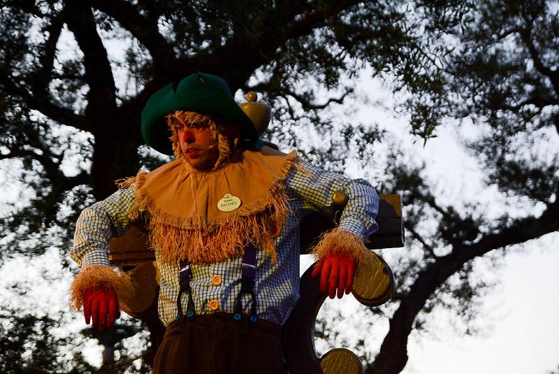 Human Scarecrow