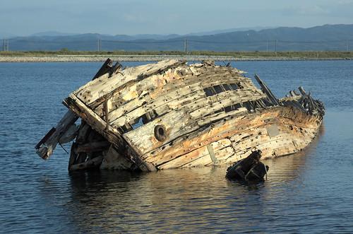 sunset japan ship shimane scrap thrush bluerockthrush 廃墟 島根県 イソヒヨドリ 廃棄船