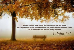 1 John 2:1 nlt