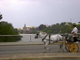 2001 Spanien - 0033