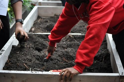 Spring Planting Day