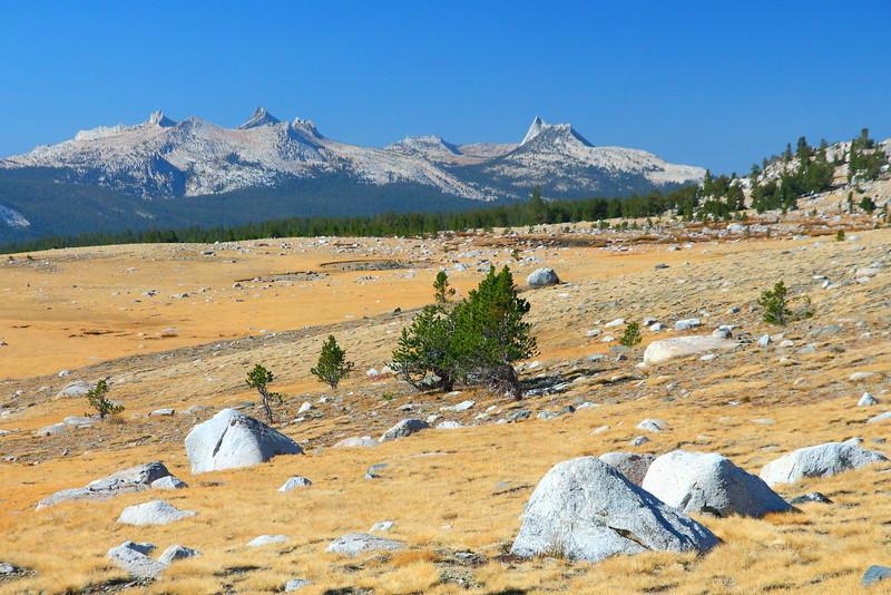 IMG_3726 Gaylor Lakes Basin, Yosemite National Park