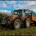 Ensilage de maïs - Finistère