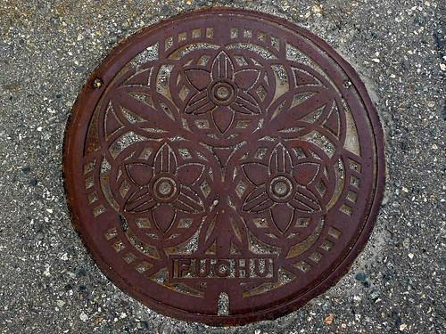 Fuchu Toyama, manhole cover (富山県婦中町のマンホール)