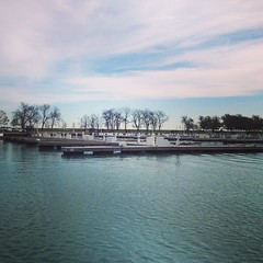 Chicago Sailing has left the harbor. #belmontharbor #lakemichigan