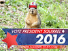 president squirrel