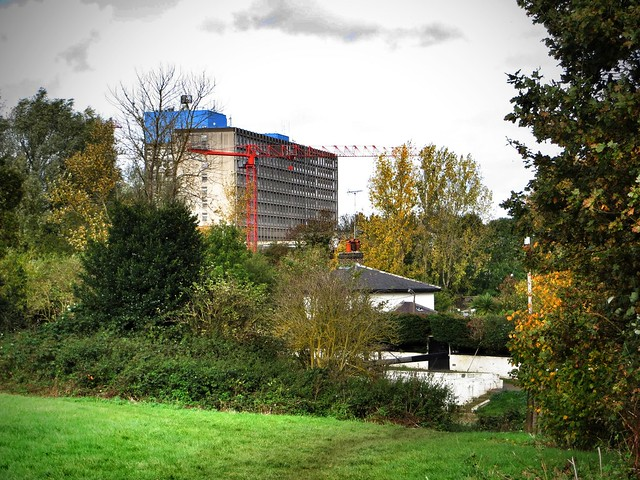 Ealing Hospital from the meadows