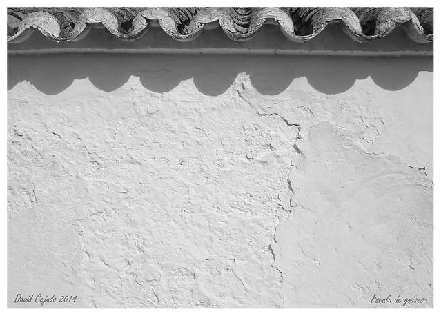 Serie_F_005 5/5 en Arquitectura Popular Manchega