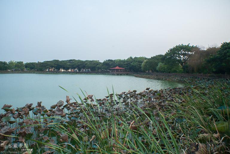 台南私藏景點-新營天鵝湖 (9)