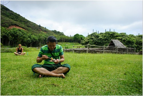 003_體驗傳統食材採集_005_在大自然中體驗夏威夷傳統食物
