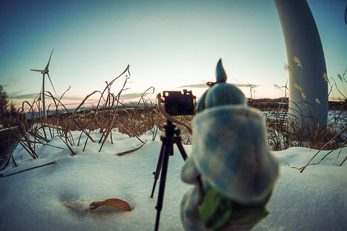 カメラロール-10173