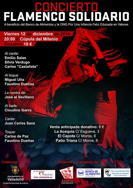 Flamenco Solidario 12 de diciembre Cúpula del Milenio