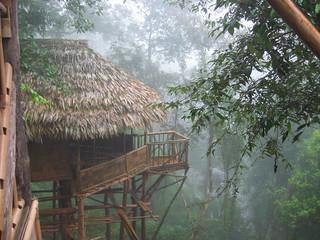 Bamboo house in Mawlynnong, Meghalya.