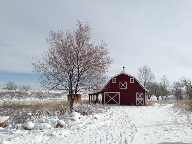 november cold snap