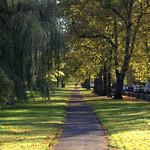 Seasonal Moor Park, Preston