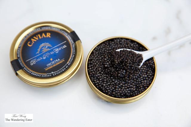 Black River Caviar -  Black Oscietra (Acipenser Gueldenstaedtii)