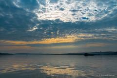 morning-view-at-zuari-river_27869736344_o