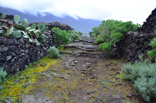 Rocky walkway, Guinea Eco Museum, Valle de Golfo, El Hierro, Canary Islands
