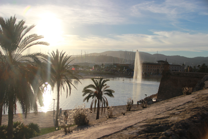 Tui_Marathon_Mallorca_2014_Palma_14